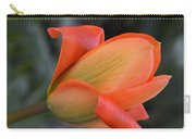 Orange Lady Carry-all Pouch