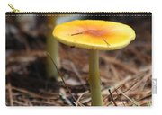 Orange Mushrooms Carry-all Pouch