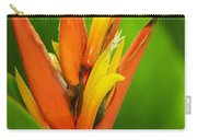Orange Pocket Fold Carry-all Pouch