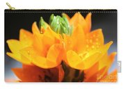 Orange Star Carry-all Pouch