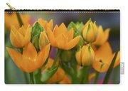 Orange Stars - Floral - Ornithogalum Dubium - Sun Stars Carry-all Pouch