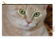 Orange Tabby Cat Poses Royally Carry-all Pouch
