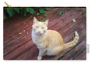 Orange Tabby On Porch Carry-all Pouch