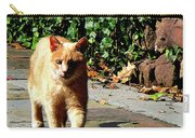 Orange Tabby Taking A Walk Carry-all Pouch