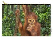 Orangutan  Carry-all Pouch by Frans Lanting MINT Images