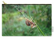 Orb Weaver Spider - Araneus Carry-all Pouch