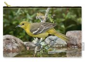 Orchard Oriole Female Carry-all Pouch