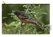 Orchard Oriole Male Carry-all Pouch