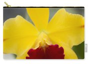 Orchid Beauty - Cattleya - Pot Little Toshie Mini Flares Mericlone Hawaii Carry-all Pouch by Sharon Mau