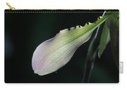 Orchid Petal Carry-all Pouch