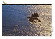Oregon State Pacific Coast Carry-all Pouch