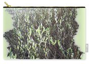 Oregon Willow Catkins Carry-all Pouch