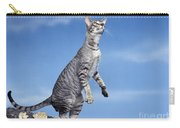 Oriental Cat Carry-all Pouch