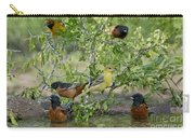 Orioles At The Pool Carry-all Pouch