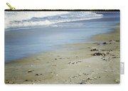 Ormond Beach Carry-all Pouch