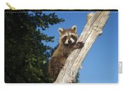 Orphaned Raccoon Carry-all Pouch