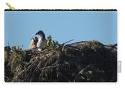 Osprey Chicks In Nest Carry-all Pouch