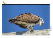 Osprey Eating Lunch Carry-all Pouch