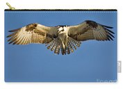 Osprey Hovering Carry-all Pouch