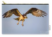Osprey In Flight Carry-all Pouch