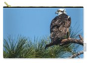 Osprey Keeping Watch Carry-all Pouch