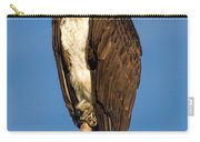 Osprey Perched In Yellowstone National Park Carry-all Pouch