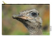 Ostrich 4 Carry-all Pouch