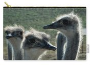 Ostrich Round-up Carry-all Pouch