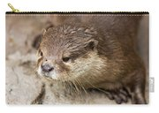 Otter Closeup Carry-all Pouch