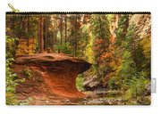 Out On A Ledge  Carry-all Pouch by Saija  Lehtonen