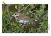 Ovenbird Carry-all Pouch