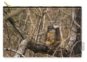 Owlets Carry-all Pouch