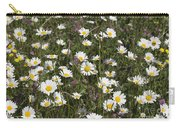 Ox-eye Daisies Jackson's Brickworks Middlewood Way Poynton Cheshire England. Carry-all Pouch