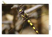 Pacific Spiketail Dragonfly On Mt Tamalpais 2 Carry-all Pouch