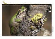 Pacific Treefrog Carry-all Pouch