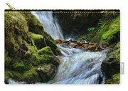 Packer Falls Vert 1 Carry-all Pouch