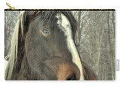 Paint Horse In Winter Carry-all Pouch