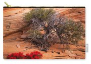 Paintbrush And Juniper Carry-all Pouch by Inge Johnsson