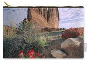 Paintbrush And  Organ Rock Carry-all Pouch