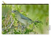 Painted Bunting Hen Carry-all Pouch