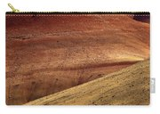 Painted Curves Carry-all Pouch