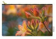 Painterly Rhodies Carry-all Pouch
