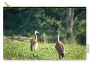 Pair Of Cranes Carry-all Pouch