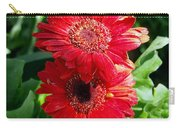 Pair Of Red Gerber Daisy Flowers With Ladybug Carry-all Pouch