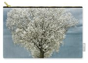 Pale White Tree On Cloudy Spring Day E83 Carry-all Pouch