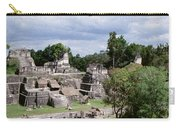 Palenque Ruins Carry-all Pouch