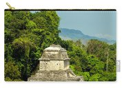 Palenque Temple Carry-all Pouch