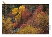 Palisades Creek Canyon Carry-all Pouch