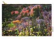 Palisades Carry-all Pouch
