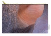 Palo Duro Canyon 021013.151 Carry-all Pouch